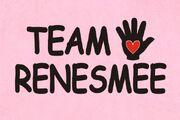 TeamnessiePINK1