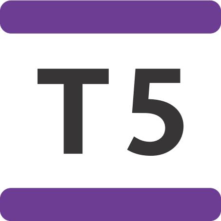 T5 Paris.png