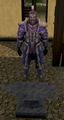 Invictum armour set equipped.png