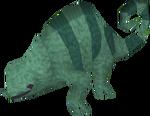 Baby chameleon (swamp)