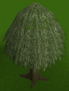 Willow tree built