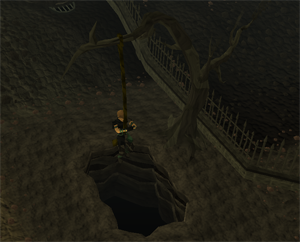 Wilderness agility course(Rope swing)