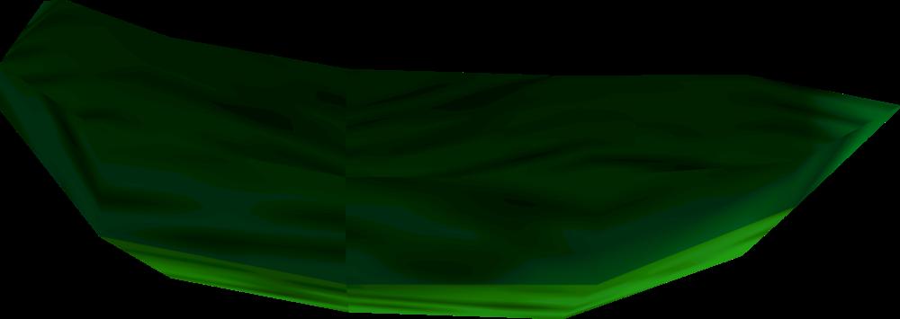 Sea cucumber detail
