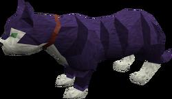 Overgrown cat (purple) pet