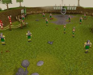 Gnomeball field old