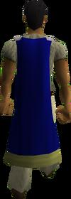 Saradomin cape equipped