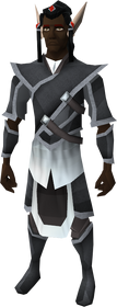 Elven outfit equipped (male)