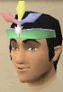 Omni-tiara chathead