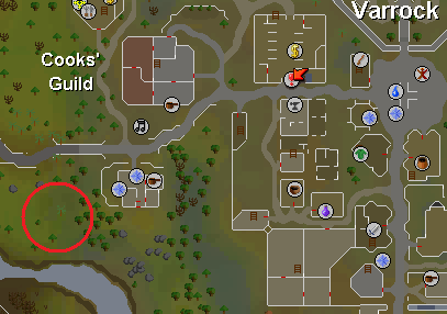 how to wear rune osrs