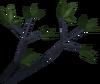 Bryll (item) detail