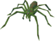 Jungle Spider