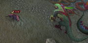 Jadinko kills baby