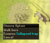 Empty Collapsed trap