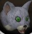 Bones (kitten) chathead