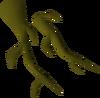 Oak roots detail
