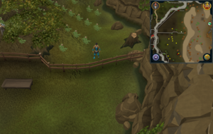 Compass clue Lumbridge in potato field west of northern entrance to Al Kharid mining site