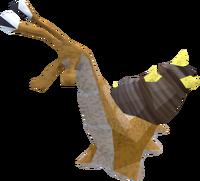Thorny snail