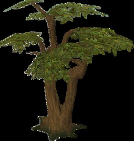Plik:Tree.png