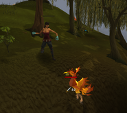 Heroes quest - Fire bird