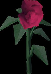 Roses built