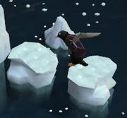 Jump penguin Jump!