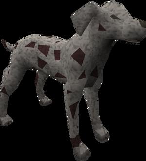 Dalmatian (red) pet