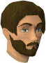 Guildmaster chathead