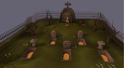 RuneScapeHD Leo event