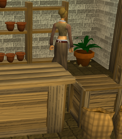 Sarah's Farming Shop interior