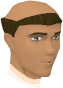 Monk (Lost City) chathead