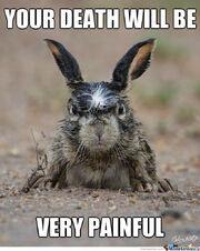 Angry-Bunny-Meme-11