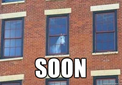 Soon horse