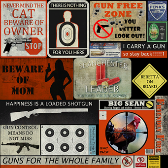 Friendly Fire gunstoresigns