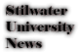 Saints Row 2 clothing logo - uninews