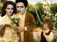 Twilight hobbits