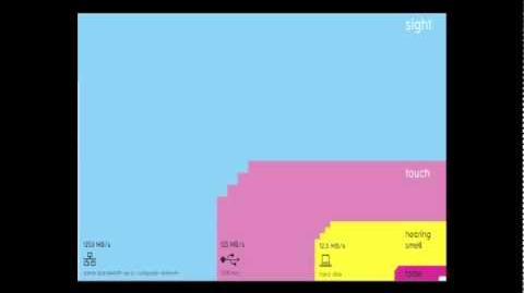 David McCandless The beauty of data visualization