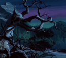 Forest (Who's Afraid of the Big Bad Werewolf)
