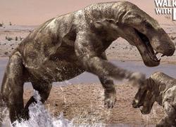 Gorgonops2
