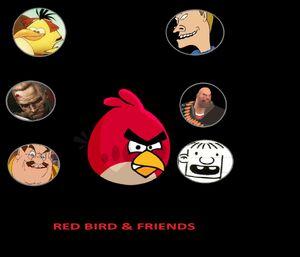 RedBird&Freinds