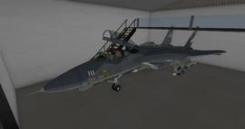 Grumman F-14A Tomcat (AMOK) 1