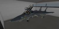 Grumman F-14A Tomcat (AMOK)