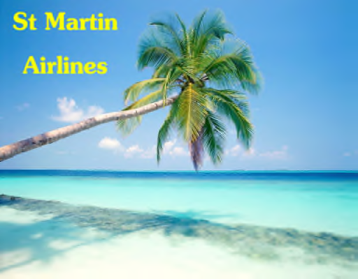 File:St Martin Airlines Logo.png