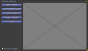 Snapshot-preview-window