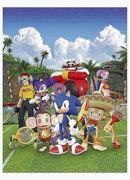 Sega narrowweb 300x416,0