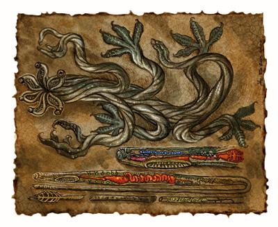 {$tags} Anatomia di uno tsochar - by E. Cox Signori della Follia: Il Libro delle Aberrazioni, 2005-04 © Wizards of the Coast & Hasbro