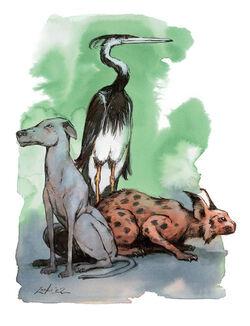 Animals5.jpg
