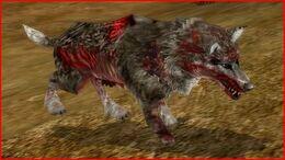Man-eater Wolf