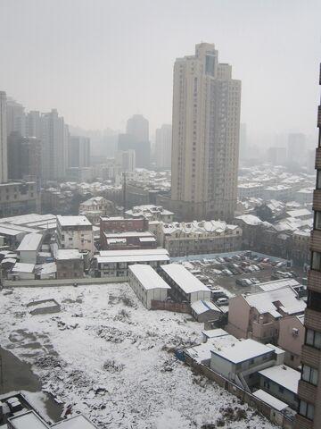 File:Snow-xuhui-kinggimped.jpg