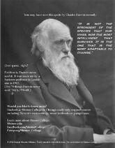 Darwintest2