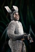 Shrek the Musical Donkey